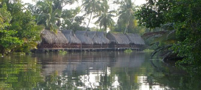 Delta du Mekong (1/2) : découverte du marché flottant, canaux et la région avec Hoang Son